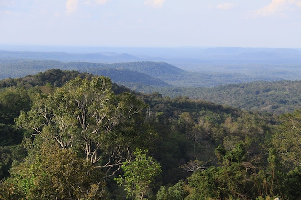 The forested hills of Mondulkiri Province, eastern Cambodia. The forest is disappearing fast as a result of logging and the expansion of rubber plantations in the area. On a recent visit to the area, though, I learned that the destruction of the forest began five decades ago as it  fell victim to the war in Southeast Asia.