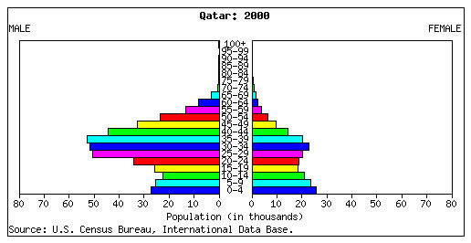 Image result for Unique population pyramids